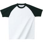 画像1: 在庫限 プリントスター (Printstar) 00137 RSS半袖ラグランTシャツ S-XL